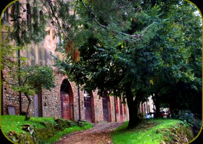 monastere chemin arbre